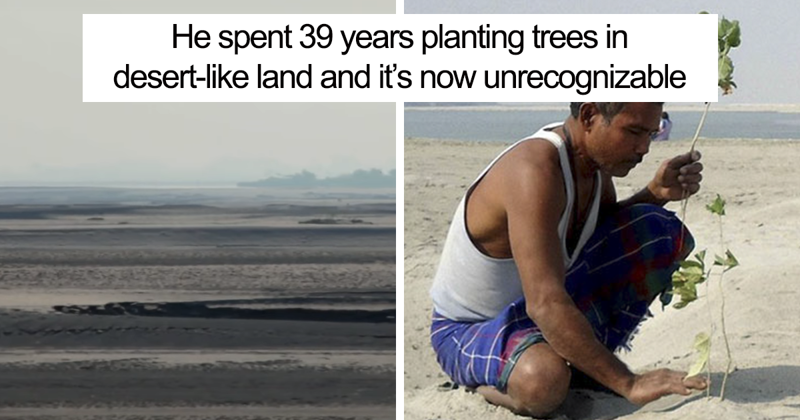 Almost 40 Years Ago a 16-Year-Old Started Planting a Tree Every Day On a Remote Island