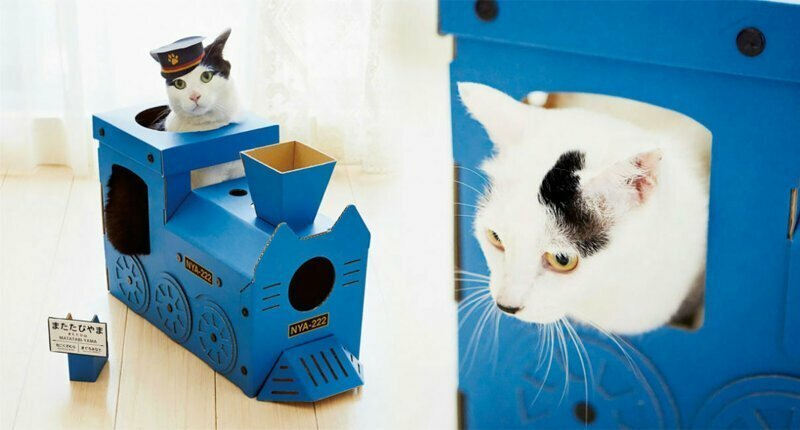 Turn Your Cats Into Furry Train Conductors With Colorful Cardboard Trains