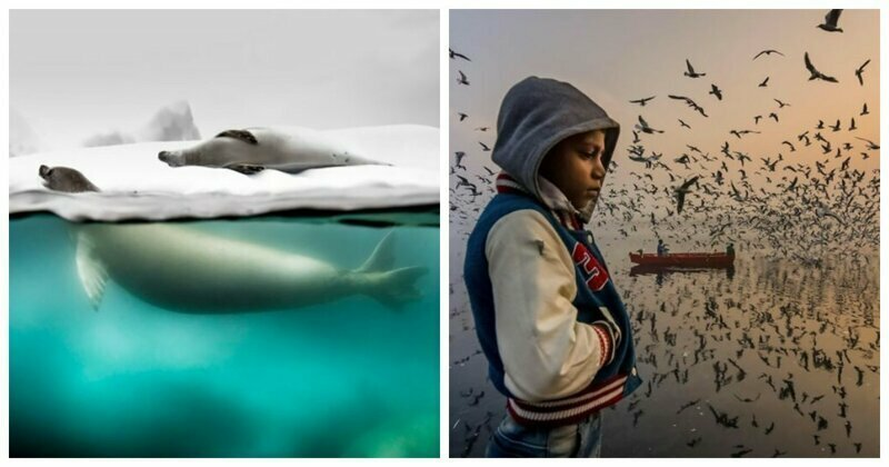 The National Geographic's Travel Photo Contest Is Over And Here Are The Winners