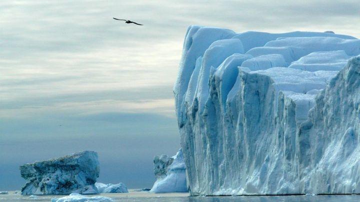 Они взяли с собой камеру в удаленный уголок Гренландии