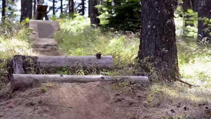 Вы не поверите, как быстра эта маленькая собачка