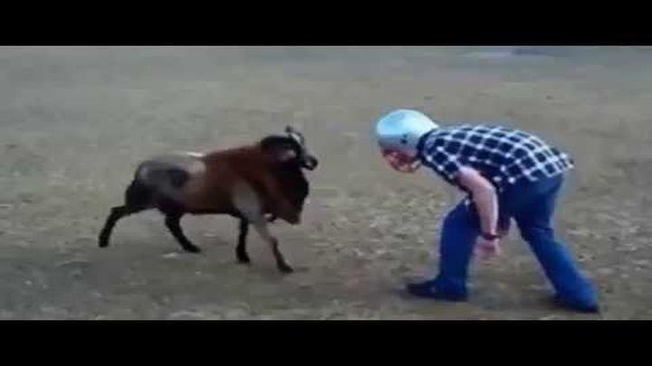 Козел против БАРАНА