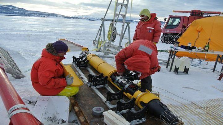 Невиданный биоценоз подо льдами Антарктики