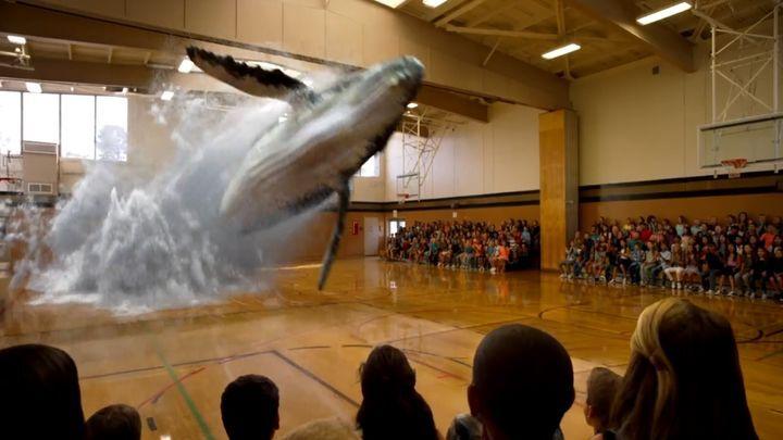 Дополненная реальность - это уже настоящее: вчера в кино, сегодня в интернете, завтра в каждом спортзале!