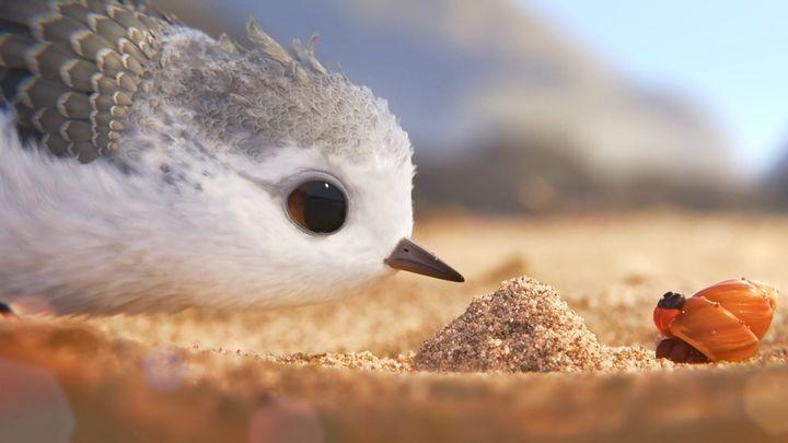Боритесь со своими страхами! Новый потрясающий короткометражный анимационный фильм от Disney и Pixar
