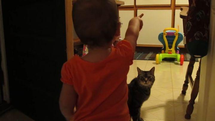 Кот и малыш отлично поняли друг друга!