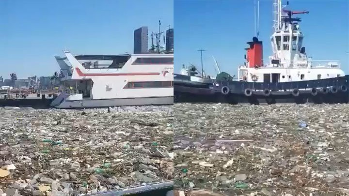 Море пластикового мусора  в Южной Африке