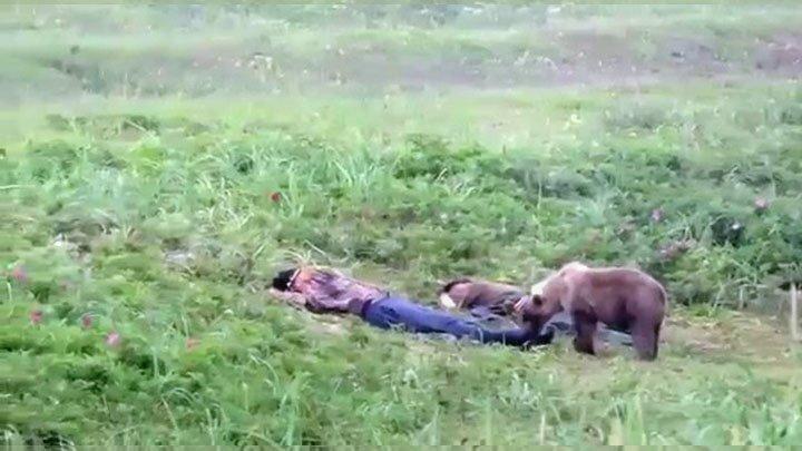 Любопытный медвежонок  разбудил отдыхающих на пляже мужчин