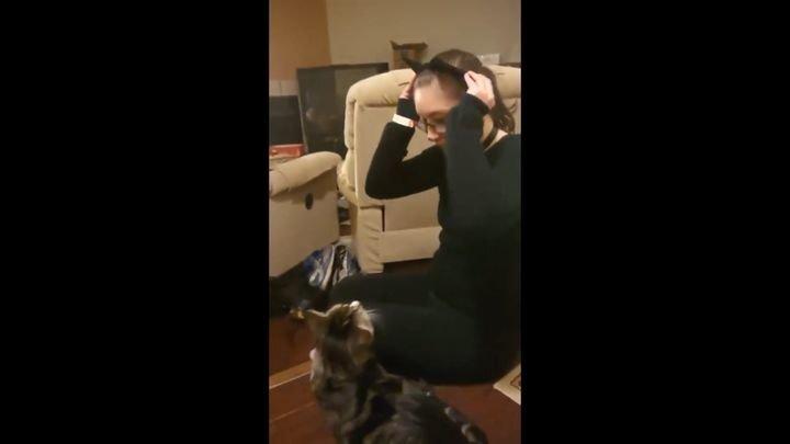 Впечатлительный кот не оценил костюм хозяйки