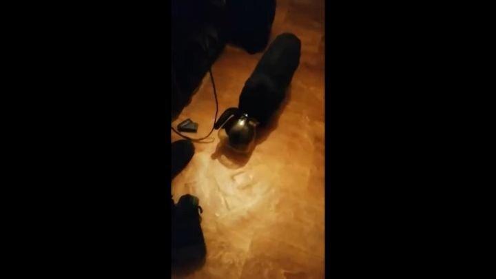 Кот Толик собрался в космическую экспедицию