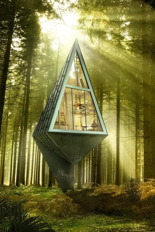 Современные экологичные дома в лесу