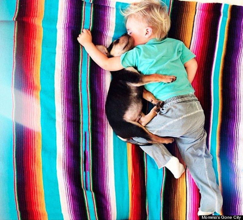 Очаровательная  фотосессия спящего ребенка и щенка