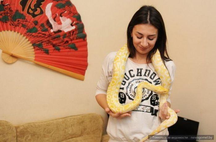 Танго со змеями: танцовщица рассказала о своих партнерах-рептилиях