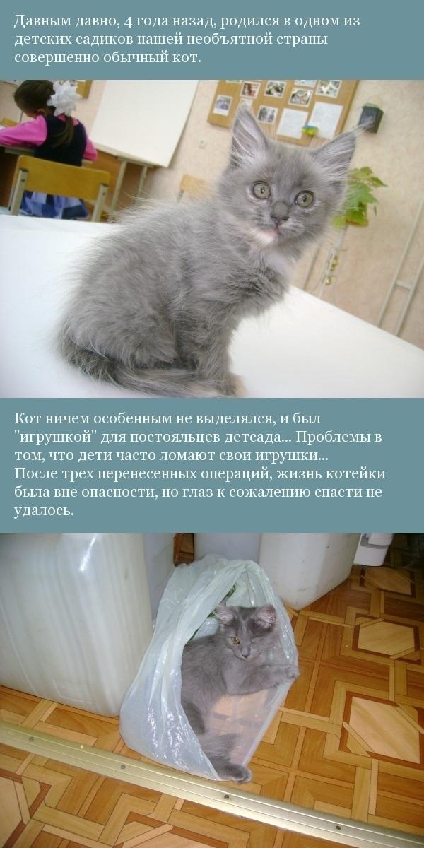 Жил-был кот...