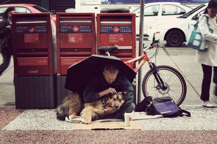 Фотографии, доказывающие, что нет никого преданней собаки