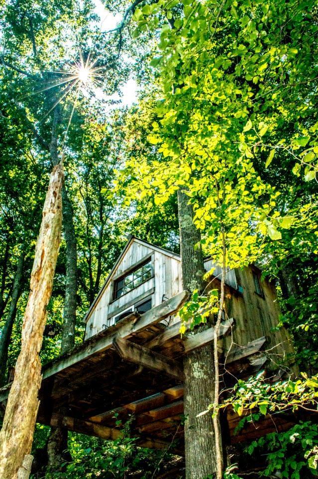 Хороший домик в лесу