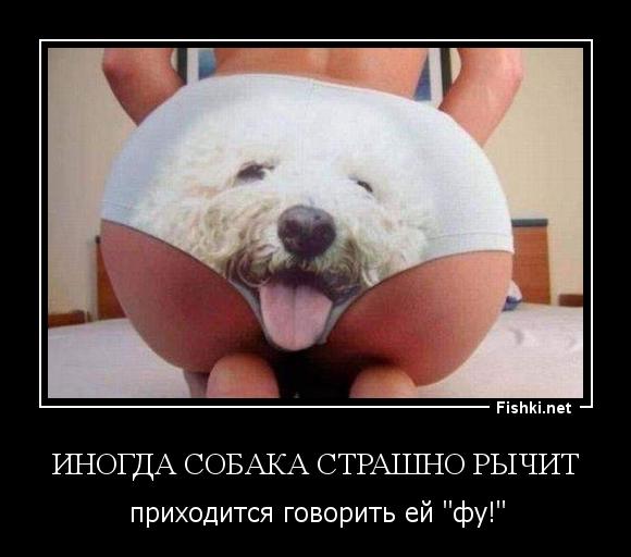 Иногда собака страшно рычит