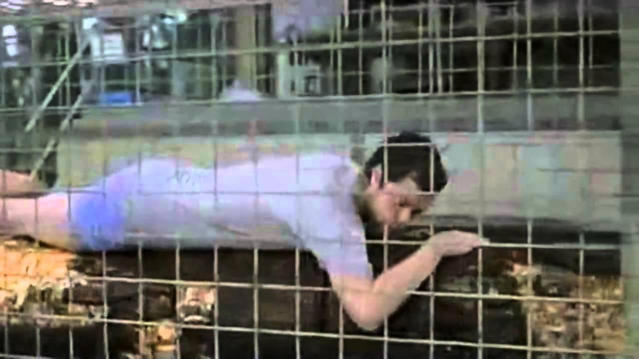 Рекламу про любовника в шкафу признали лучшей в Европе