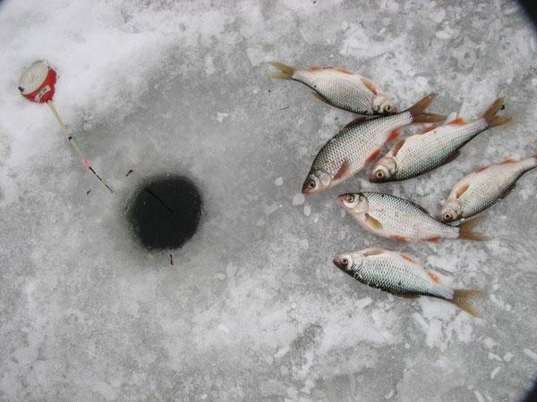 Толпой отжали улов у рыбаков