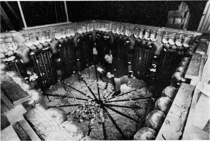 Эксперимент с мышиным Раем и тревога о будущем человечества