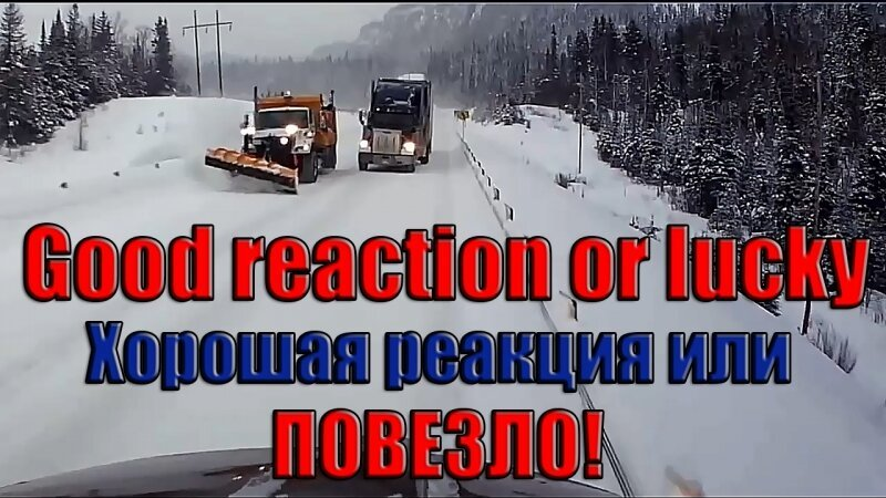 Хорошая реакция на дороге или ПОВЕЗЛО!
