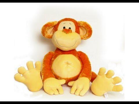 Учим животных. Кто такие приматы?