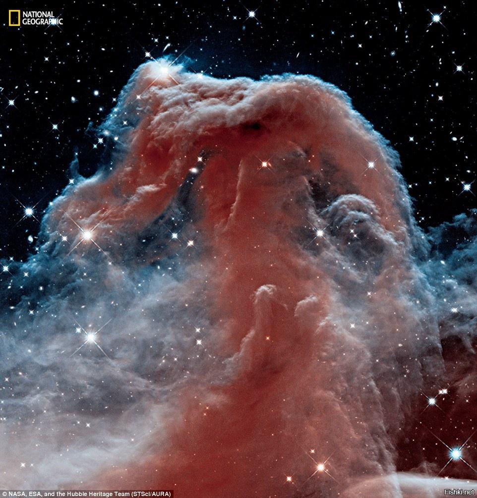 Туманность Конская Голова, самый популярный из объектов наблюдения телескопа ...