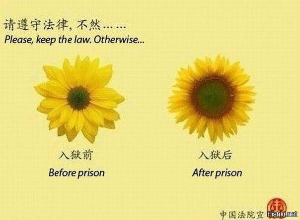ПОЖАЛУЙСТА, соблюдайте закон