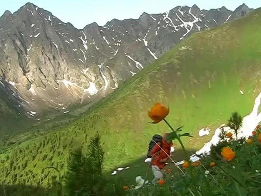 Продолжение прогулки по Горному Алтаю