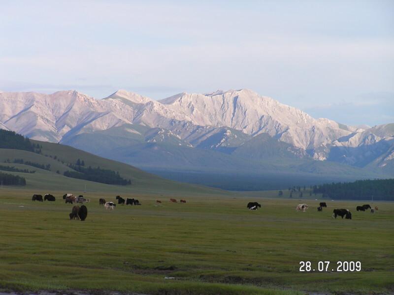 Воспоминания о Монголии