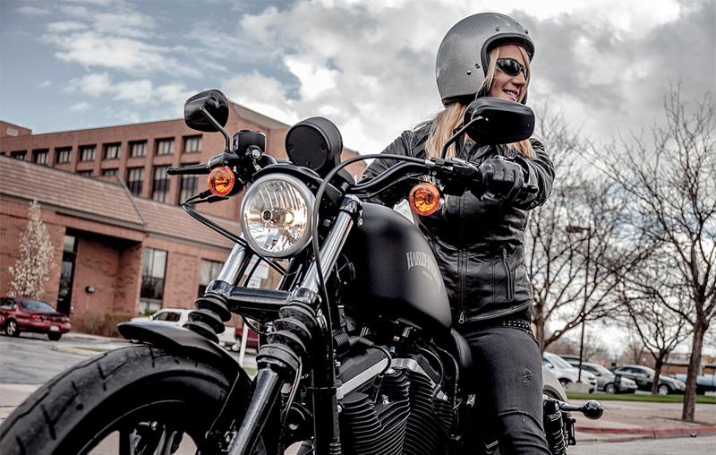 Как различить модели мотоциклов от Harley-Davidson