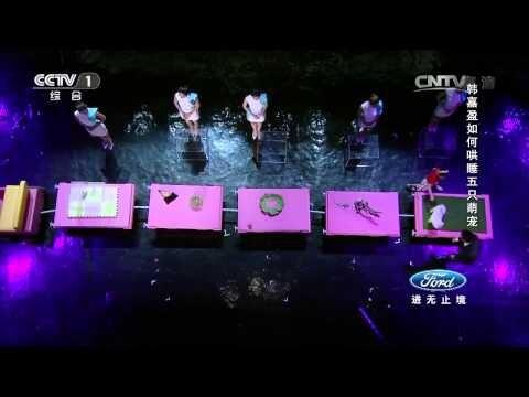 Девочка из Китая гипнотизирует разных животных