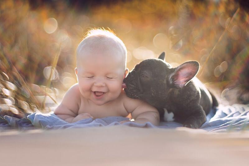 Младенец и бульдог, родившиеся в один день, дружат крепче, чем братья