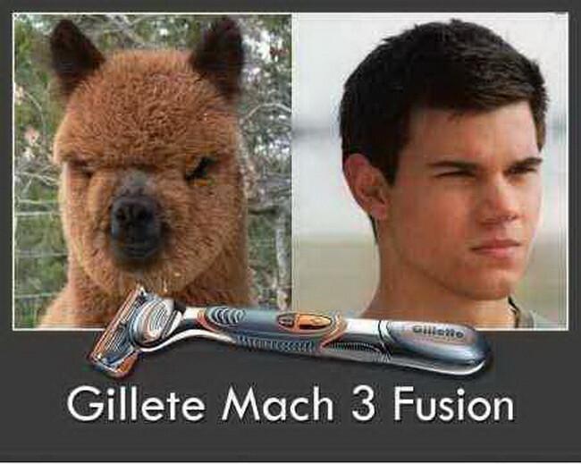 Эффективное бритье