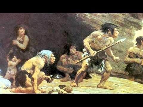 Южноафриканская находка.  Топоры каменного века.  Мезолитический человек додумался до клея