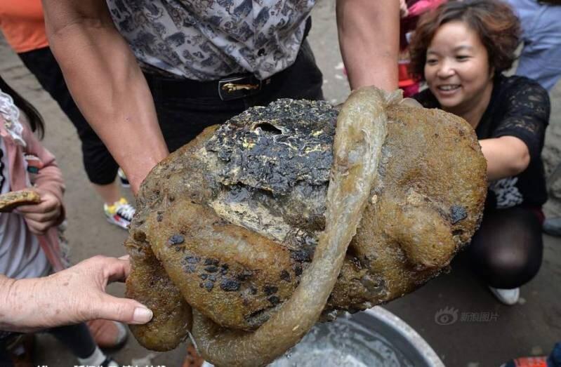 Из китайской реки выловили неопознанное существо