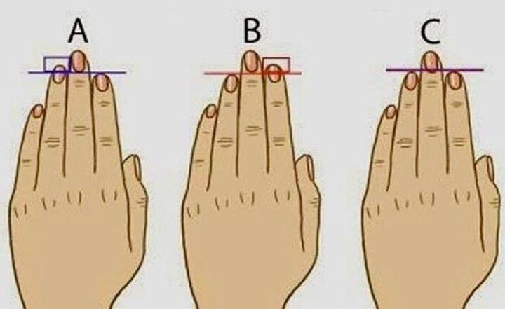 Раскрой тайну своего характера по длине пальцев