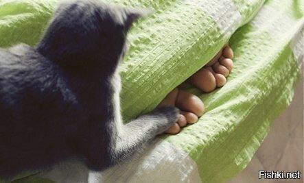 Когда ты сладко спишь