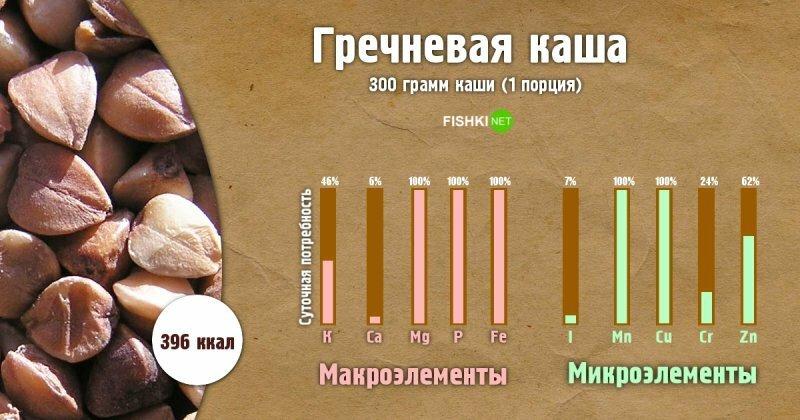 Сколько пользы в одной порции каши