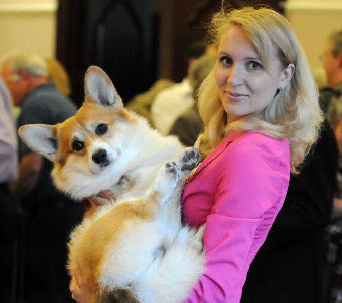 Собака Пинкертон помогла раскрыть секрет частного самолёта