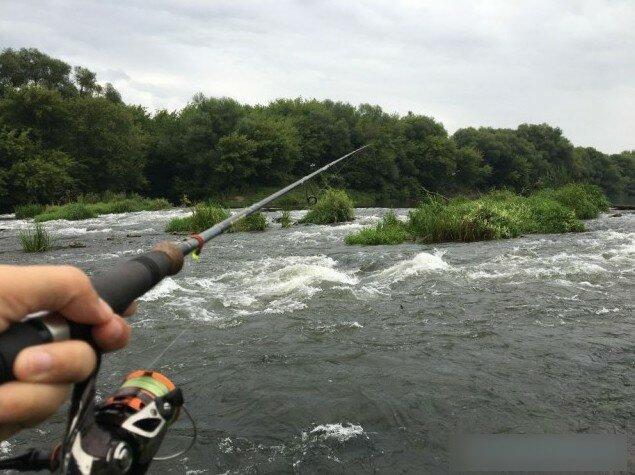 Рыбалка. Спиннинг. Дон