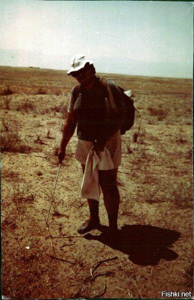 92 год кызыл кумы экскустия за эфой,песчаным удавчиком и сцинковым