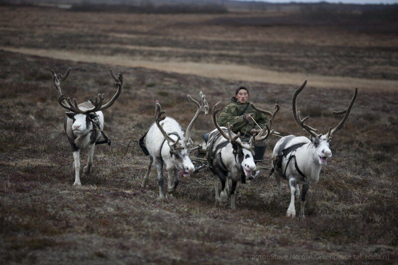Ямал: Жизнь и быт в вечной мерзлоте