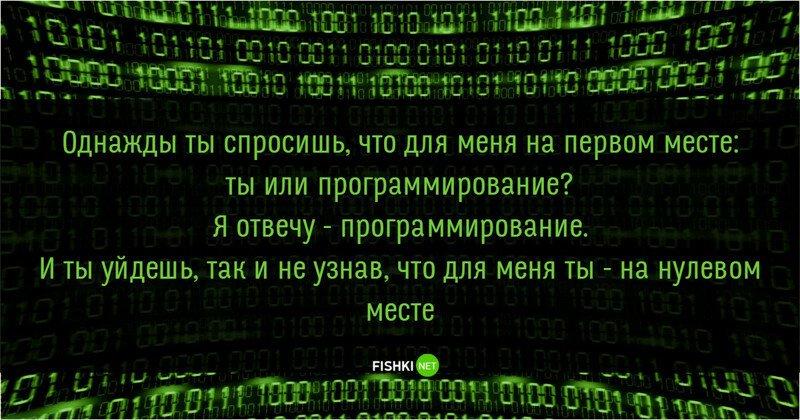 Особенности жизни типичного программиста