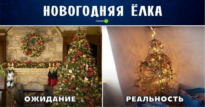 Размечтался! Новогодние ожидания и реальность