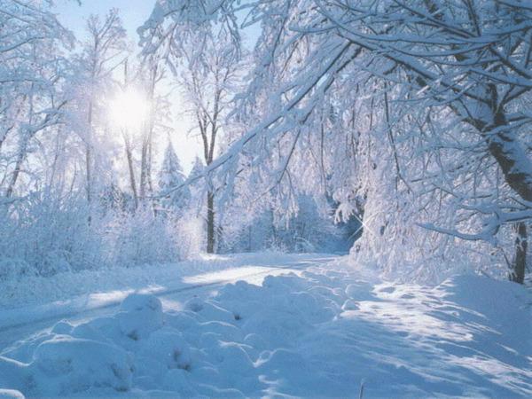 Сквозь нежную снежность.
