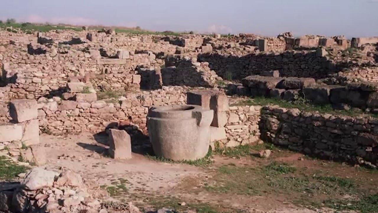 Интересные открытия археологии