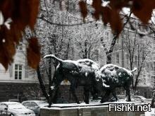 сегодня Калининград завалило снегом