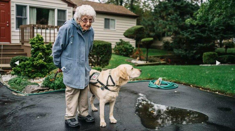 После знакомства с ним она перестала бояться выйти из дома