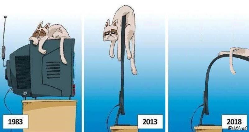 Эволюция отношений кота и телевизора